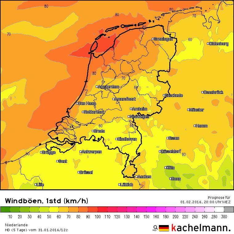 Vanavond is er, met name in het noordwestelijk kustgebied, kans op zware windstoten tot zo'n 90 km/uur. Bron: Duitse HD model.
