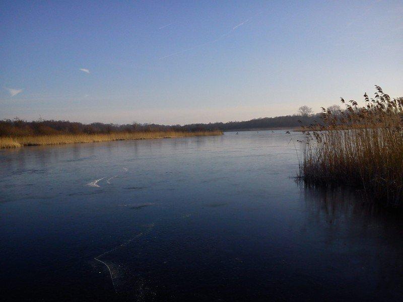 Hier en daar was het ijs (net aan) dik genoeg om te schaatsen. Deze foto is genomen door Tobias van Tellingen.