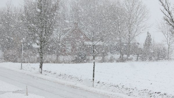 Flinke sneeuwbuien in het noordoosten van het land. Foto: Jannes Wiersema.