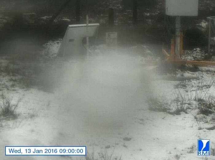 Niet een heel best beeld, maar het geeft wel aan dat er in Mont-Rigi (671 m) sneeuw ligt. Bron: RMI