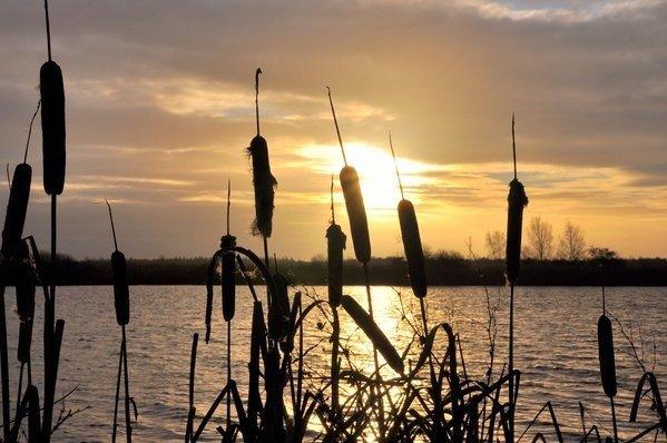 Ben Saanen maakte deze fraaie foto van de zonsopkomst in het zuiden van het land.