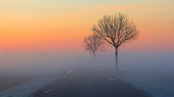 We begonnen de zondag lokaal met mist, maar de zon won het uiteindelijk overal. Deze foto werd gemaakt door Jannes Wiersema uit het Groningse Roodeschool.