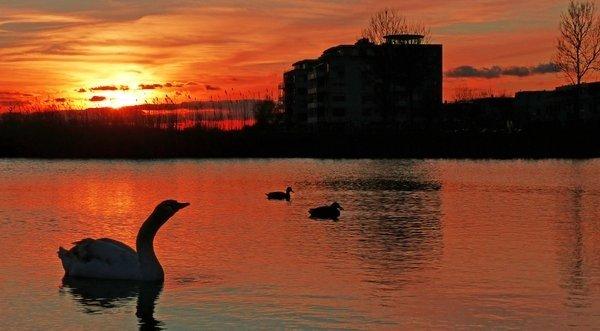 Fraaie zonsondergang gisteren. 'Avondrood gisteren, vandaag mooi weer'. Foto is van Gieny van Asten