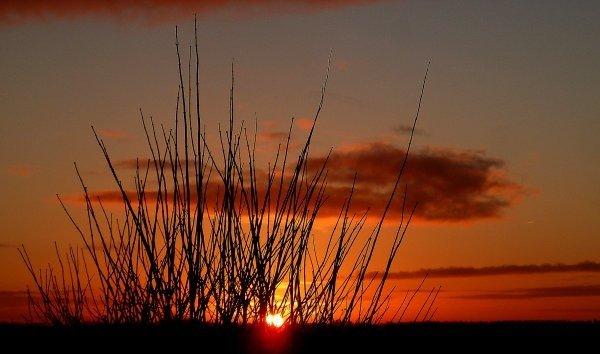 De zon kwam gisteren zeer fraai op. Deze foto werd gemaakt door Koos Spakman.