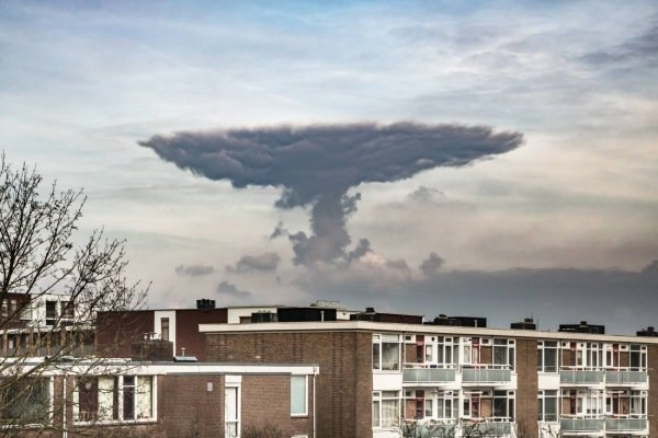 Ook een fraai exemplaar gefotografeerd door Willem Bentink. Foto via Facebook.