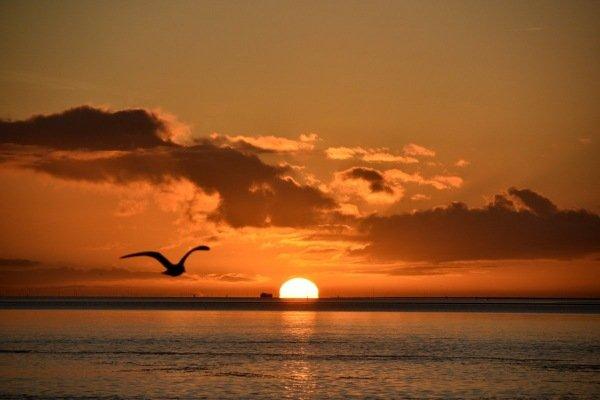 Op Terschelling kwam gisteren de zon zeer fraai op. Foto is van Sytse Schoustra.