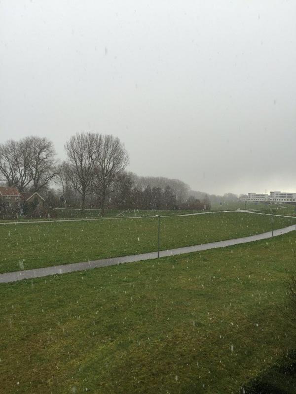 Gisteren viel er op veel plaatsen (natte) sneeuw. De komende dagen zal het echter droog blijven. Gelukkig hebben we de foto's nog... Foto is van Arno van Brakel.