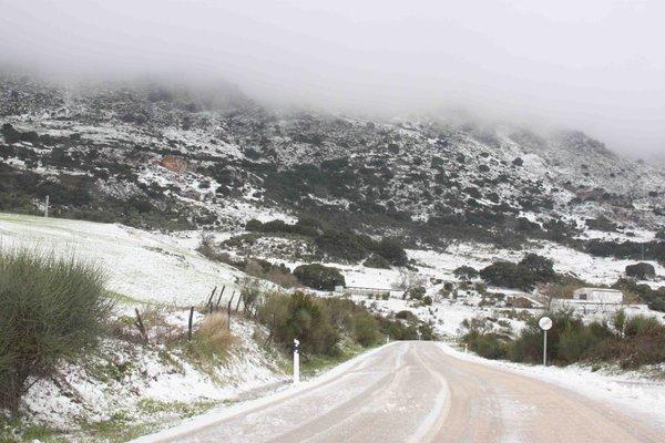 Ook sneeuw in het zuiden van Spanje, de regio Malaga op een hoogte van 1000 meter. Foto via Twitter @malagadigital_
