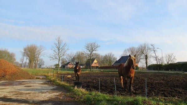 het was gisteren ook een mooie dag in het noorden. Deze foto werd gemaakt door Jannes Wiersema.