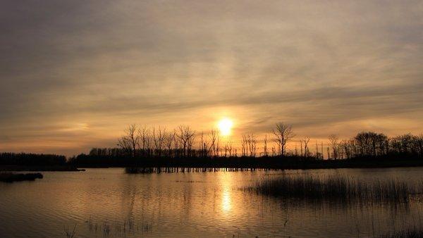 Een zeer fraaie gesluierde zonsondergang. Foto is van Martin Vye.