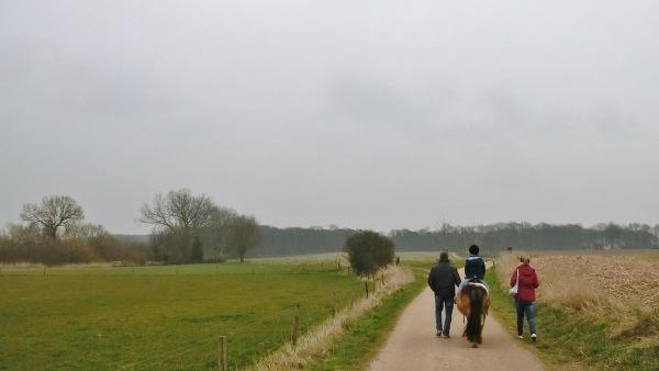 Het was een grijze, bewolkte dag en dat is treffend gefotografeerd door Sjra Claessen in het Limburgse Reuver.