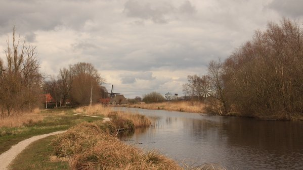 Niet overal scheen de zon uitbundig. Bij Martin Vye in het Friese Wolvega was het overwegend bewolkt.