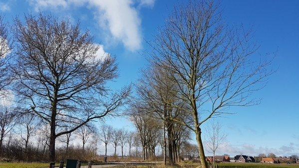 Flinke zonnige perioden bij Jannes Wiersema in het Groningse Roodeschool.