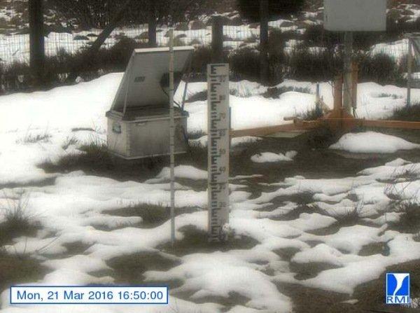 Er liggen hooguit nog wat sneeuwresten op de Mont-Rigi (670 m) Bron: RMI.