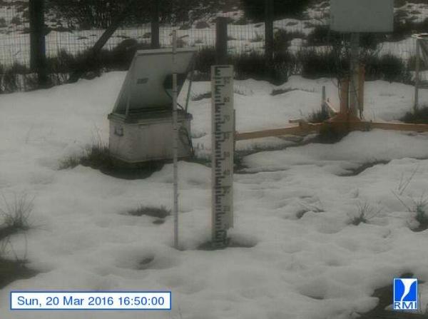De sneeuwlaag wordt met de dag minder op de Mont-Rigi (670 m) Gisteren lag er nog hooguit een centimeter of 4. Bron: RMI.