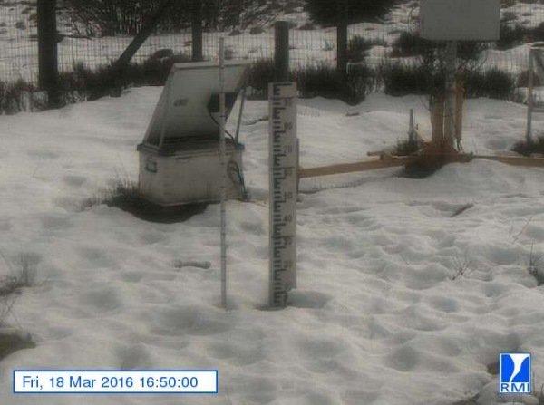 De sneeuwlaag wordt met de dag minder. Op de Mont-Rigi (670 m) lag gisteren nog een centimeter of 5. Bron: RMI.