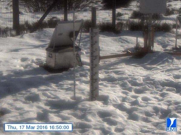De sneeuwlaag wordt met de dag minder. Op de Mont-Rigi (670 m) lag gisteren nog minder dan 10 centimeter. Bron: RMI.