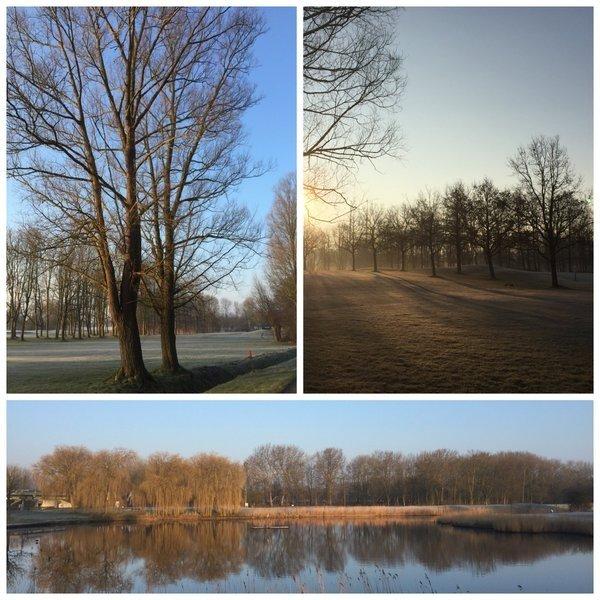 Mooie collage van de prachtige dag in Spaarnwoude door Yvonne Wijsman.