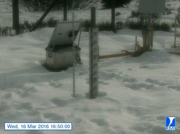 Op de Mont-Rigi (670 m) smelt heel langzaam de sneeuw. Gisteren lag er nog een kleine 10 centimeter. Bron: RMI.