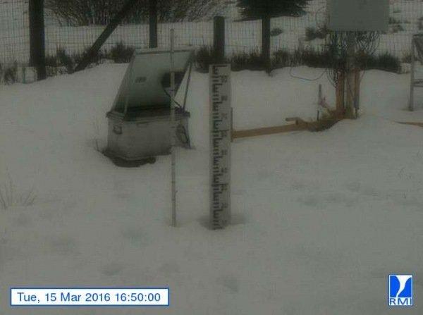 Er lag gistermiddag nog altijd zo'n 15 centimeter sneeuw op de Mont-Rigi (670 m). Bron: RMI.