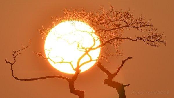 Ook Arjan Pat maakte een foto van de (rode) zonsopkomst