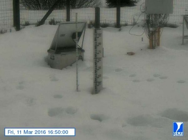 Er lag gistermiddag nog zo'n 20 centimeter sneeuw op de Mont-Rigi (670 m). Bron: RMI.