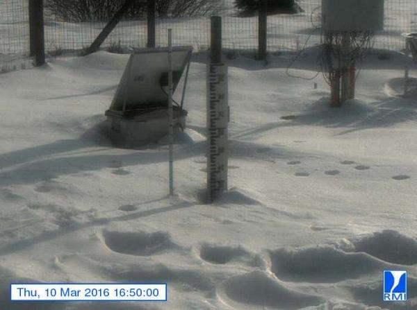 Er lag gistermiddag nog zo'n 25 centimeter sneeuw op de Mont-Rigi (670 m). Bron: RMI.