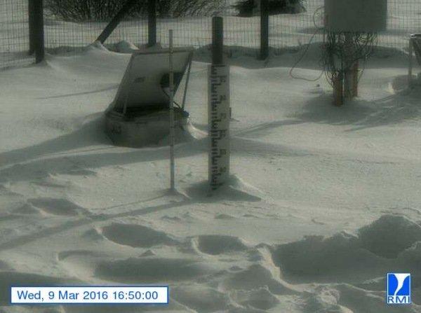 Er lag gistermiddag zo'n 30 centimeter sneeuw op de Mont-Rigi (670 m). Bron: RMI.