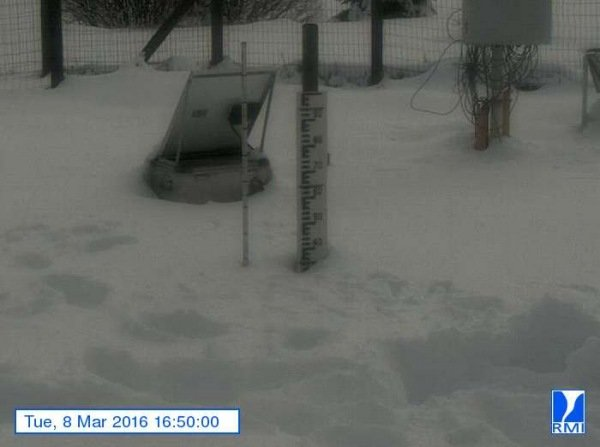 Er lag gistermiddag zo'n 35 centimeter sneeuw op de Mont-Rigi (670 m). Bron: RMI.