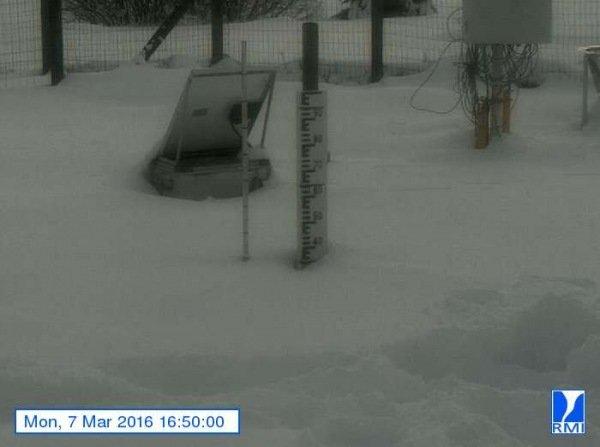 Er ligt een flink pakket sneeuw op de Mont-Rigi (670 m). Gistermiddag lag er ruim 30 centimeter sneeuw. Bron: RMI