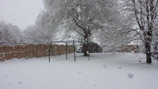Ook in Vlaanderen in Gingelom viel sneeuw. Deze foto werd gemaakt door Christel Vandenborne