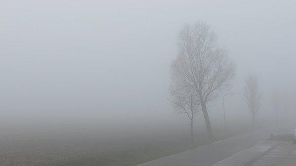 We begonnen de dag gisteren lokaal met mist zoals hier te zien is in Roodeschool. Foto is van Jannes Wiersema.