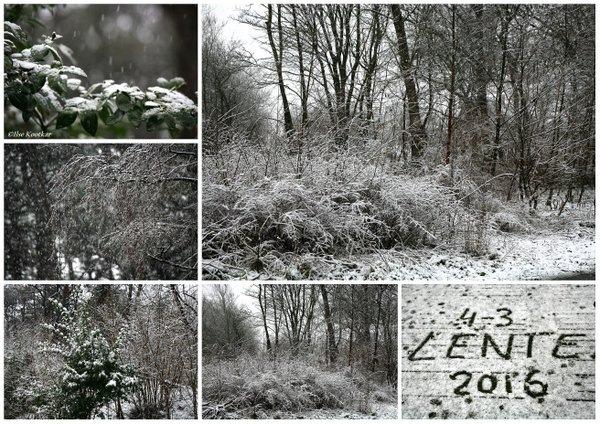 Ilse Kootkar maakte een fraaie impressie van de sneeuw in de Kop van Noord-Holland.