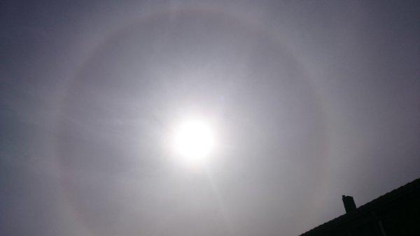 Gisteren was er een zeer fraaie halo zichtbaar. Deze foto maakte ikzelf.