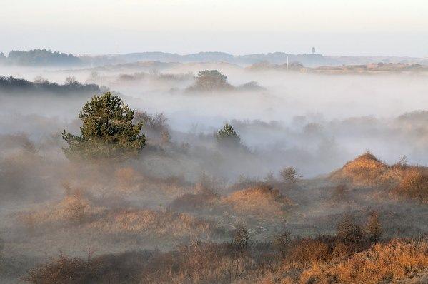 Ronald van Wijk maakte gisterochtend deze fraaie foto van nevel/mist bij de zonsopkomst.