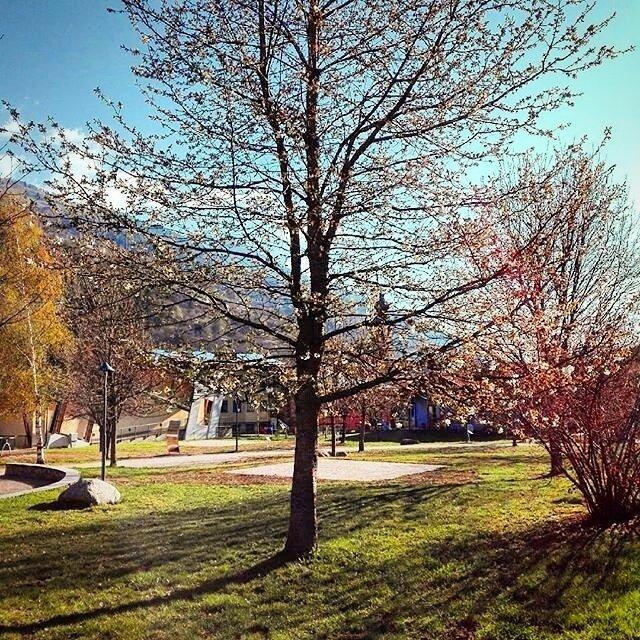 Folgarida Marilleva @SkiareaFFM -Trentino