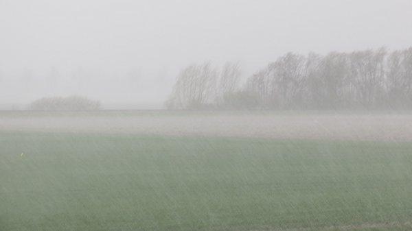 Ook in Roodeschool regende het flink. Foto is van Jannes Wiersema.
