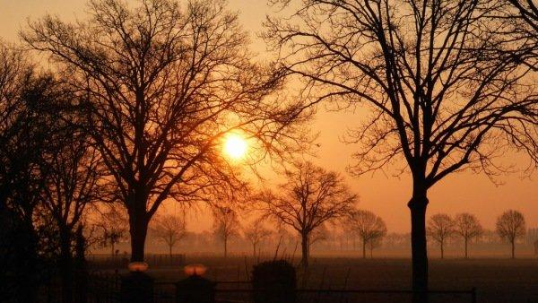 De zon kwam gisteren zeer fraai op. Foto: Truus Linders.