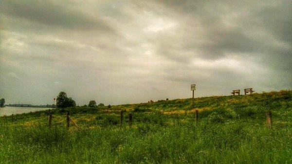 Joyce Derksen (@Joysofnature) maakte deze fraaie foto van een grijze wolkendeken.
