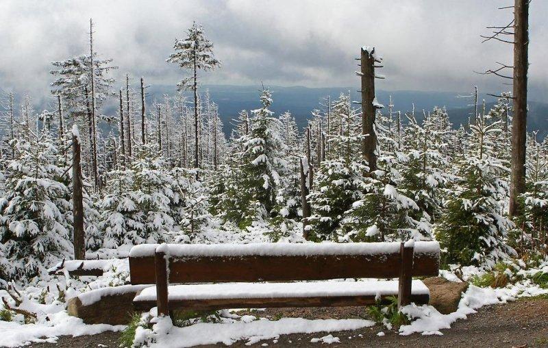 Zondag 15 mei lag er nog een laagje sneeuw op de Brocken (1.141 meter). Komende zondag zal dit niet meer het geval zijn met temperaturen die 16 graden hoger liggen dan de 15e. Foto: DPA.