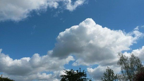 Flinke zonnige perioden gisteren leverden fraaie plaatjes op. Deze is van Martin Vye.