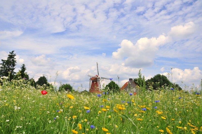Het was in het overgrote deel van het land een fraaie dag met een mix van zon en wolken. Foto: Ben Saanen.