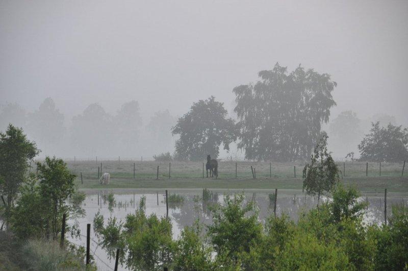 Na de overvloedige regen van de laatste tijd in met name het zuiden begon de dag gisteren met nevel. De foto is van Ben Saanen.