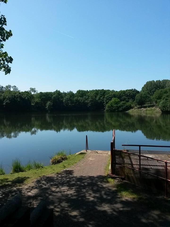 Mooie rustige foto van het schitterende weer van gisteren. Foto werd gemaakt door Marijk Beekman.