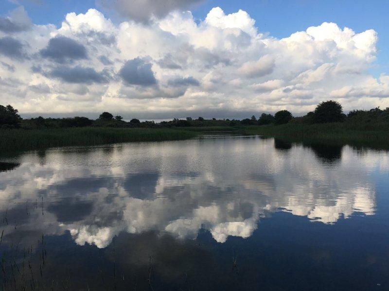 Naast wolkenvelden waren er gisteren ook flinke perioden met zon. Deze schitterende foto werd gemaakt door de boswachter van de Amsterdamse Waterleidingduinen Henk Bos.