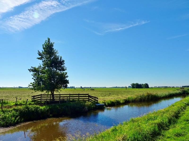 Het was gisteren weer een prachtige dag met veel zon. Deze prachtige foto werd gemaakt door Ton Wesselius.
