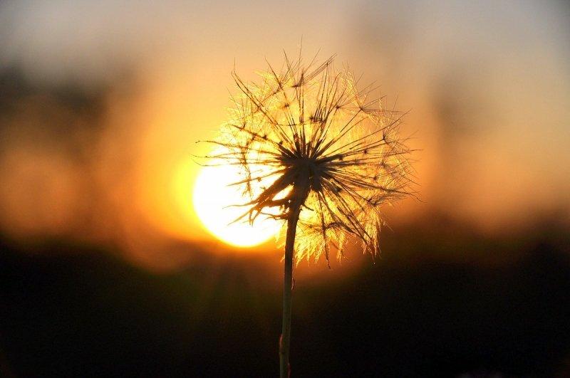 Na een prachtige dag ging de zon ook prachtig onder. De foto werd gemaakt door Ben Saanen.