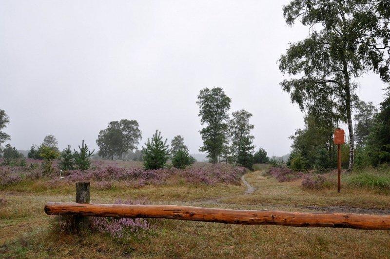 Het was gisteren aanvankelijk grijs, bewolkt en druilerig. Deze foto van Ben Saanen laat dat heel mooi zien.