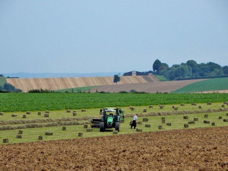 De boeren waren druk bezig gisteren. Er is immers weer regen onderweg. Foto: Marina Nefkens