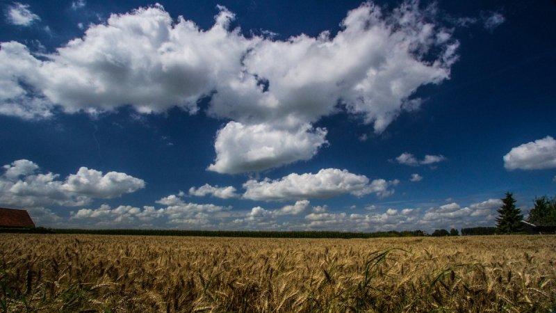 Het was een mooie dag gisteren. Deze foto werd gemaakt door Ab Donker.